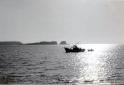 Sagres fishing boat